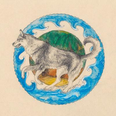 11. und 12. Wolf am Strand