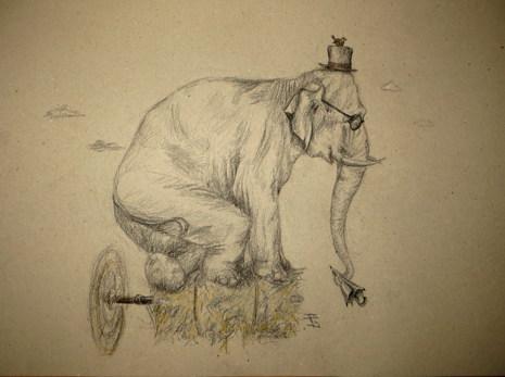 15. Elefant