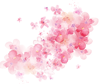 favpng_watercolour-flowers-watercolor-painting-pink-flowers.png