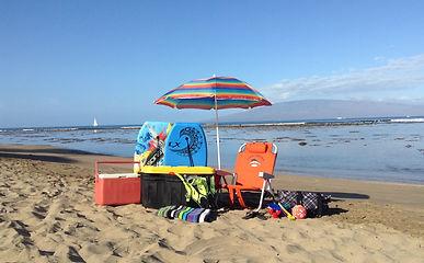 ... Storage Service We Store Your Beach Stuff Too!
