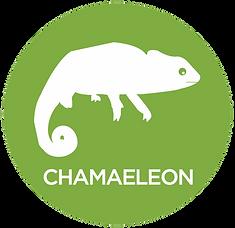 Chamaeleon.png