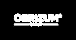 OBRIZUM Group White Logo.png