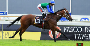 Pretty Young Thing Leads Home A Crawford Prix Du Cap Trifecta.