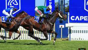 G1 CAPE FLYING CHAMPIONSHIP TO RUN FOX RUN