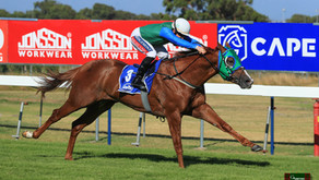 SNITZEL COLT IMPRESSES AT KENILWORTH