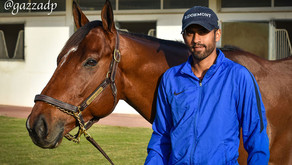 Whisky Baron Jebel Hatta preview, for Crawford Racing