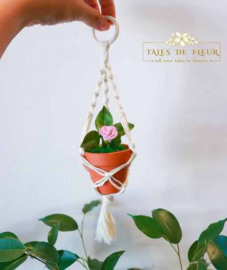 Mini macrame hanger -Rose