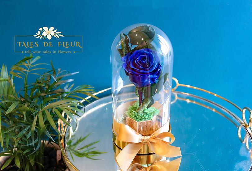 Preserved Rose in Glass Dome_ Majolica Blue