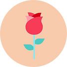 Preserved Flower Icon.png