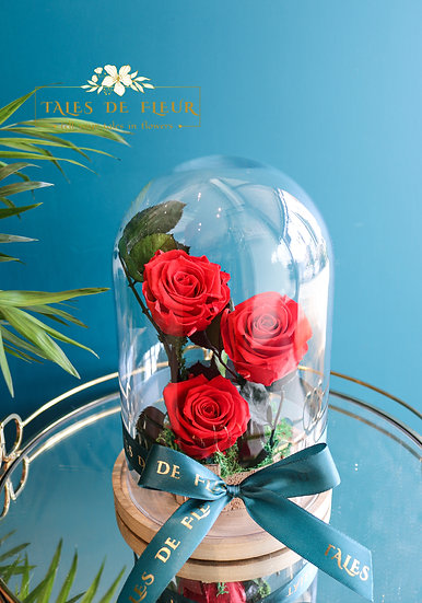 Preserved Roses in Glass Dome  - 3 Red Rose
