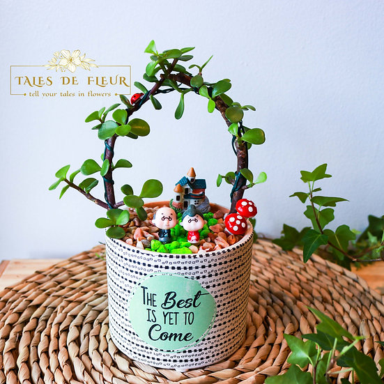 Grow old together ( 10cm Pot)
