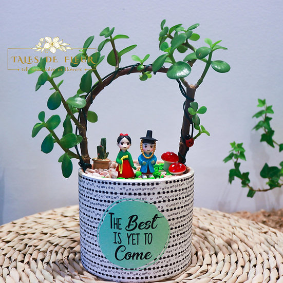 for K-drama Fan (10cm Pot)