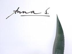 AnnaS.Logo