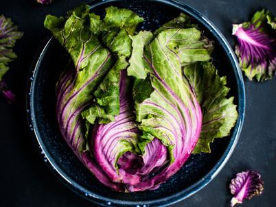 FOOD AS MEDICINE - Nutrigenomics, phytonutrients & plants
