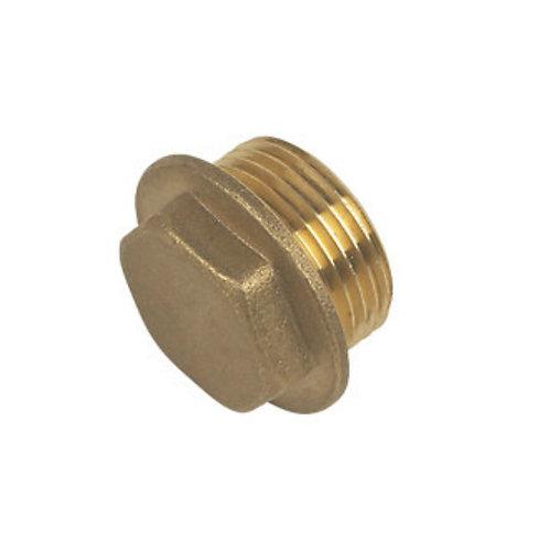 Flanged Plug