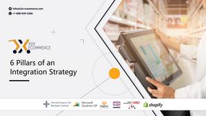 6 Pillars of an Integration Strategy