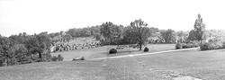 1938 Arboretum
