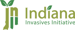 III Logo 4c@2x.png