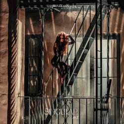 """""""Singular: ACT II"""" album cover"""