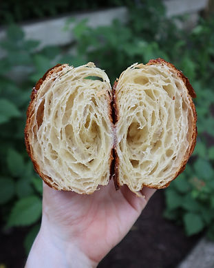 Croissant_honeycomb.JPG