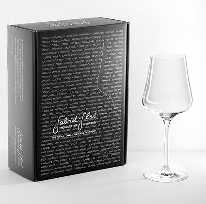 StandArt glas - Box met 2 glazen