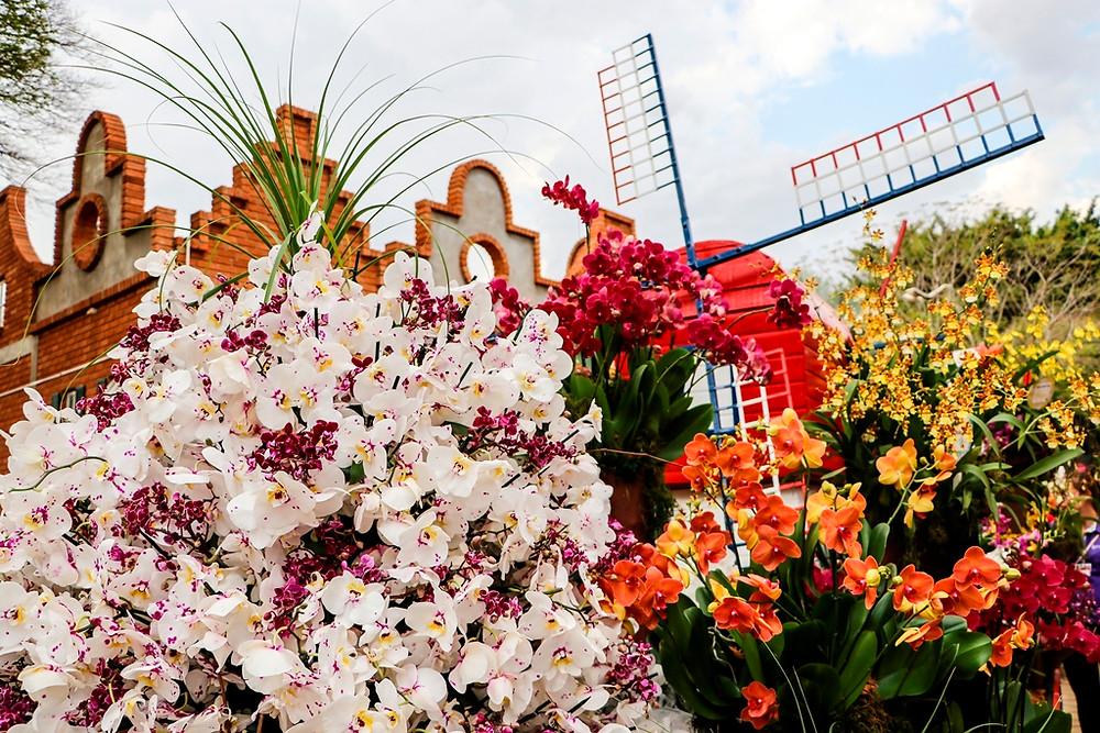 Com recorde de público, Expoflora atinge mais de 340 mil visitantes
