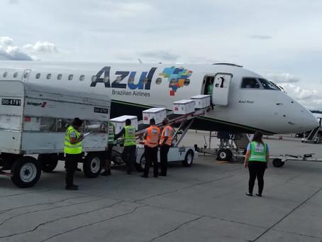 Aviação: Azul realiza operação logística para levar vacina para 12 capitais do Brasil