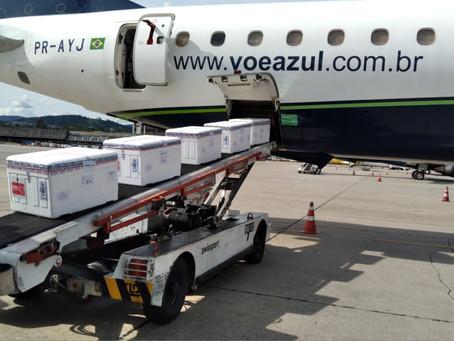 Aviação: Cenário dramático para as empresas de ground handling