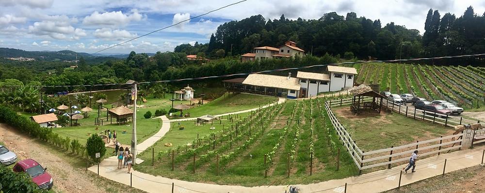 Presença portuguesa no interior de São Paulo alavanca gastronomia e turismo