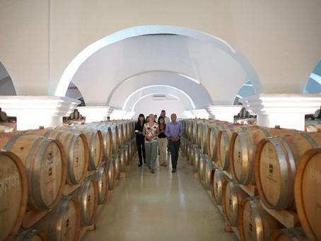 Turismo: Hotéis para amantes de vinho no Alentejo