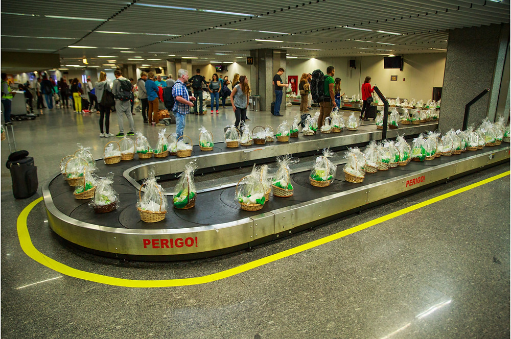 Condor inicia operação no aeroporto do RIOgaleão com viagens para Alemanha
