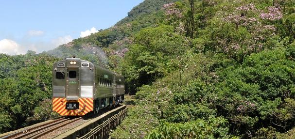 Páscoa com passeio ferroviário é ótima opção para o próximo feriado