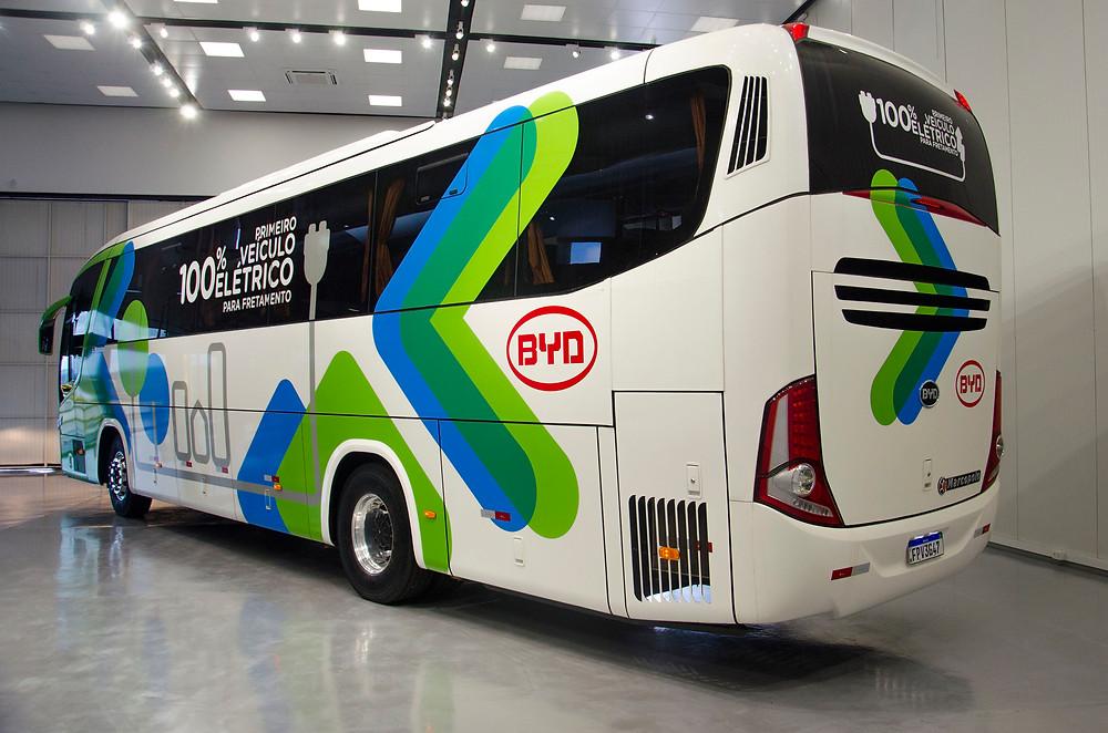Ônibus: Marcopolo, BYD e EDP Smart juntas na mobilidade elétrica no Rio Grande do Sul