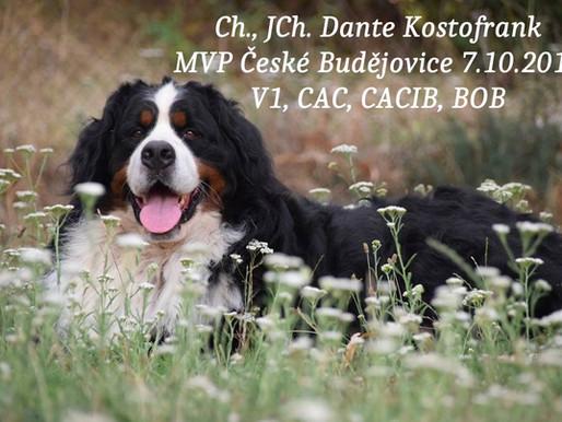 MVP České Budějovice 7.10.2018