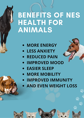 Benefits of NES Animal.png