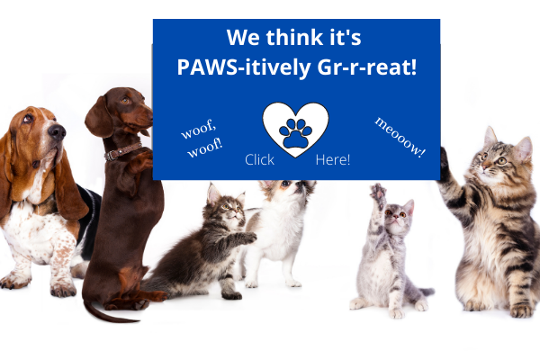 dogs+cats - grreat sign (1).png