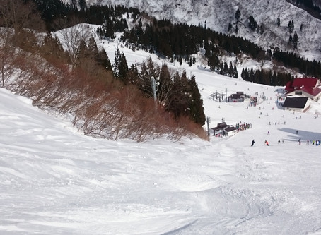 ☆スキー☆