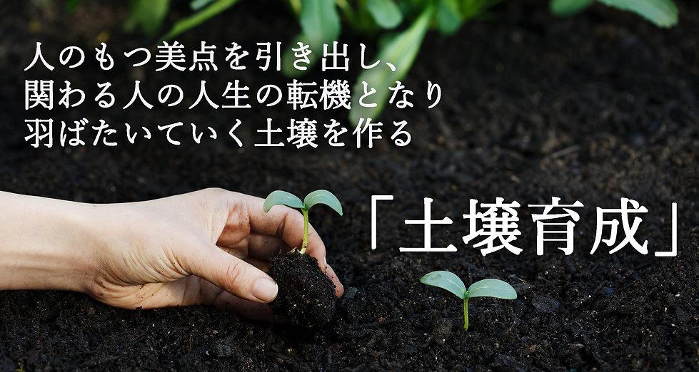 土壌育成3.jpg