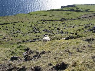 Aðalfundur og ársveitsla 18.apríl