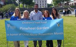 Pinwheel Garden