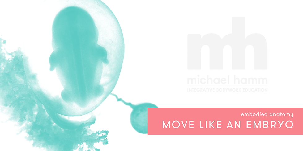ONLINE - Embodied Anatomy: Move like an Embryo
