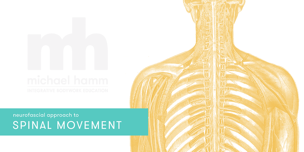 ONLINE - Neurofascial Approach to Spinal Movement