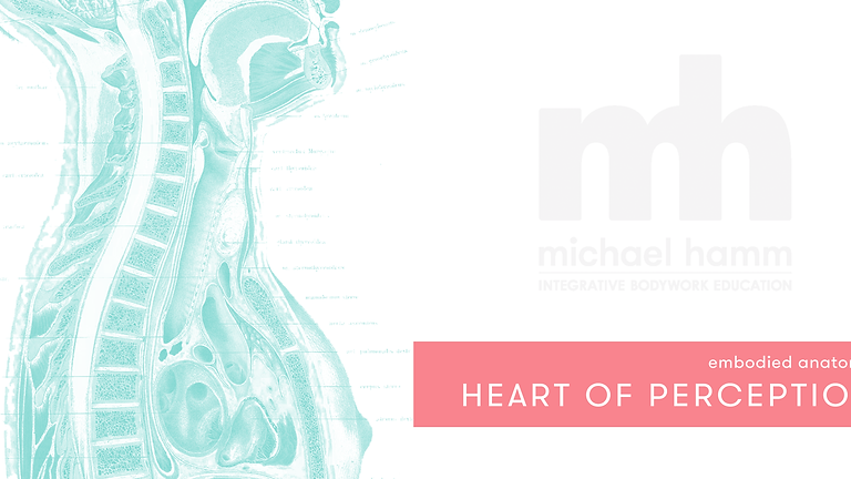Embodied Anatomy: The Heart of Perception