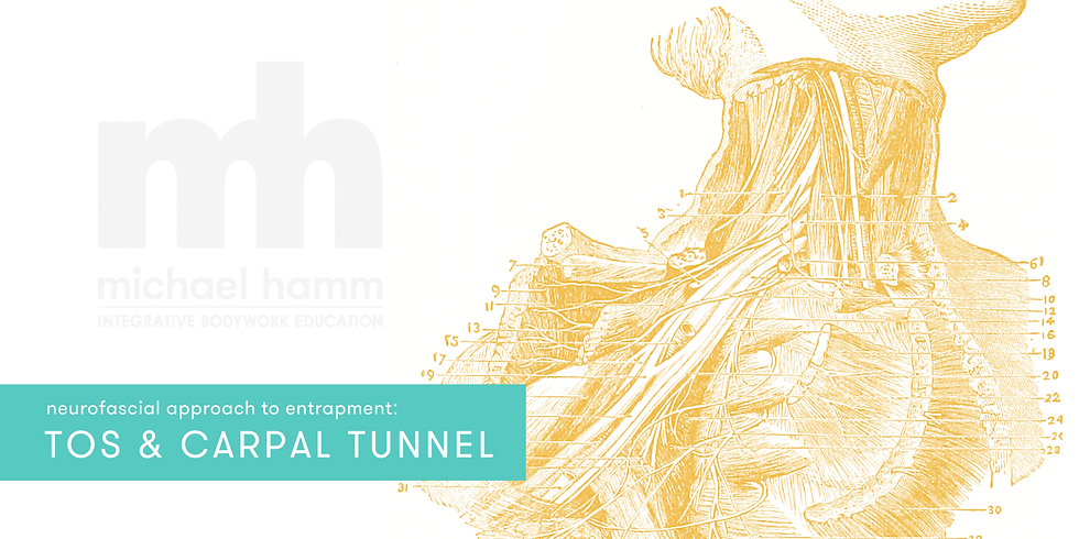ONLINE - Neurofascial Approach to TOS & Carpal Tunnel Syndrome