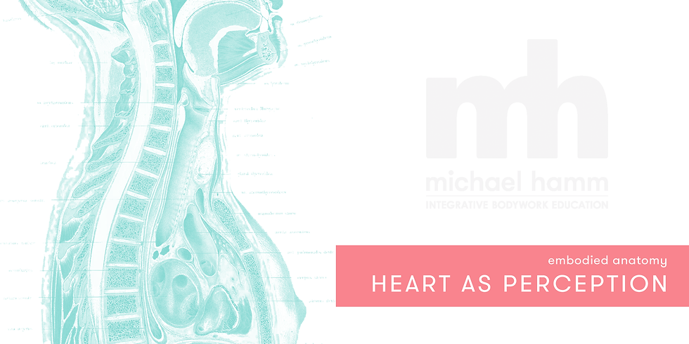 ONLINE - Embodied Anatomy: The Heart of Perception