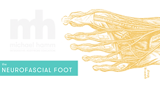 EB Banner - Foot.png