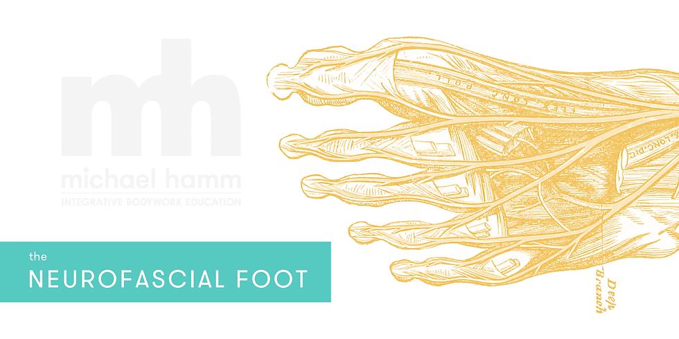 ONLINE - The Neurofascial Foot