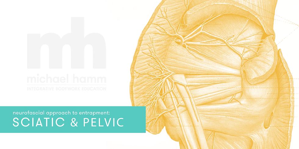 ONLINE - Neurofascial Approach to Sciatic & Pelvic Entrapment