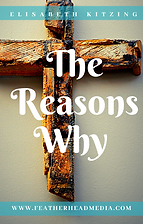 The Reasons Why.png