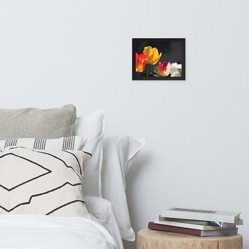Flowers 1 - Framed photo paper poster